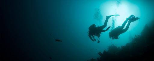COVID-19 i les activitats subaquàtiques